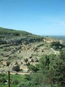 Cyrene(1)