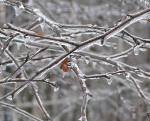 Ice-beads