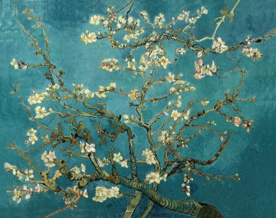 Blossoming_Almond_Tree