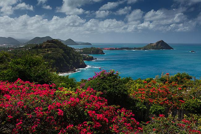 Saint-Lucia